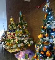 OSURC Christmas Trees 15